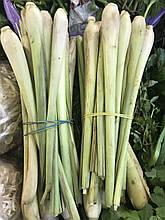 Лемонграсс свежий 100 грамм (Вьетнам)