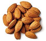 Миндаль орехи отборные сырой 100 грамм (Калифорния), фото 2