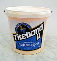 Профессиональный столярный клей D3 Titebond II Premium Franklin International  1 кг