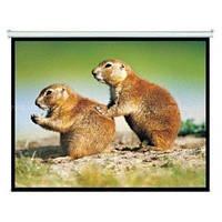 Экран Alumid Vision Rear 450x253