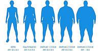 Мало учитываемые патогенетические особенности развития ожирения