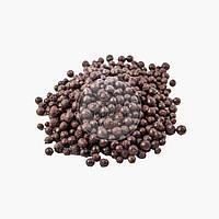 Смородина чёрная сублимированная - целая - 50 г