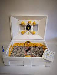 Інкубатор Автоматичний Теплуша 72 (автомат. перевор., цифровий терморег., вологомір)