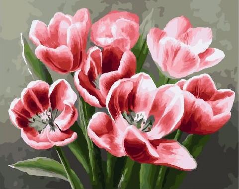 Картина по Номерам 40x50 см. Красные тюльпаны