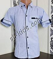 Стильна сорочка(шведка) для хлопчика 6-11 років(роздр) (блакитна) (пр. Туреччина)