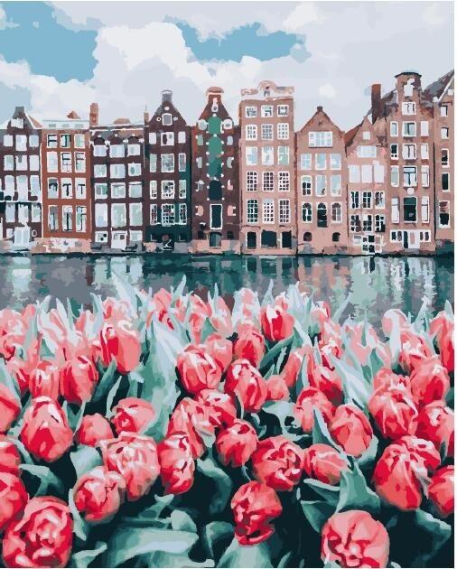 Картина по Номерам 40x50 см. Цветы Амстердама