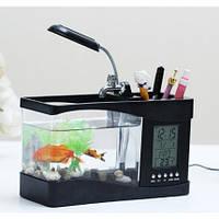 Настольный мини-аквариум черного цвета, работающий от USB с функциями часов и термометра