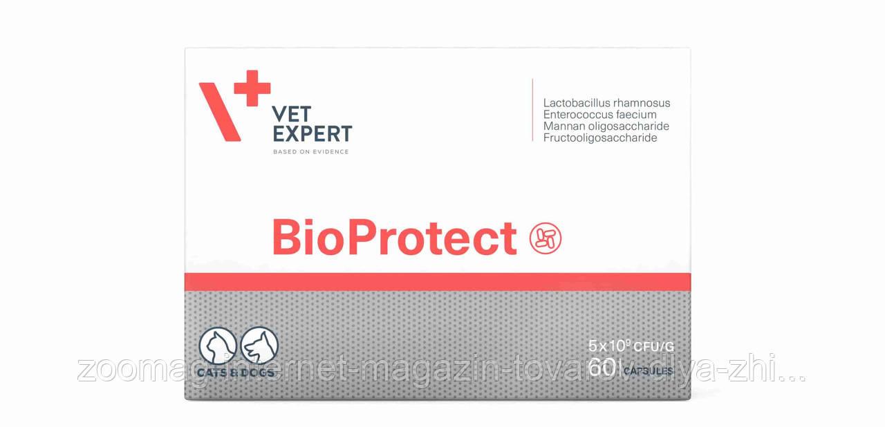 """Капсулы для желудочно-кишечного тракта """"БиоПротект"""" для собак и кошек 60шт., VetExpert™"""