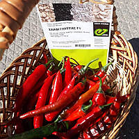 Семена перца острого Хайфи F1 (500 сем.) Enza Zaden, фото 1