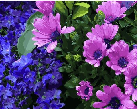 Картина по Номерам 40x50 см. Сиреневые хризантемы