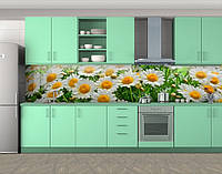 Кухонный фартук Ромашки белые (Наклейка виниловая пленка для скинали на кухню) Самоклейка 60 х 300 см.