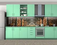Кухонный фартук Алея в осеннем парке (самоклейка наклейка виниловая пленка скинали для кухни) 60 х 300 см.
