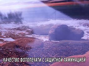 Кухонный фартук Экзотический цветок (Самоклейка наклейка виниловая пленка скинали для кухни) 60 х 300 см., фото 2