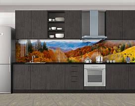 Стеновая панель с фотопечатью, 60 х 300 см. С защитной ламинацией, фото 3