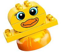 Lego Duplo Мои первые домашние животные 10858, фото 8
