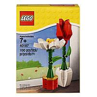 Lego Iconic Цветы 40187, фото 3