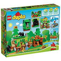 Lego Duplo Лесной заповедник 10584, фото 2
