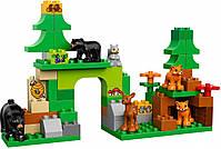 Lego Duplo Лесной заповедник 10584, фото 4