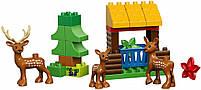 Lego Duplo Лесной заповедник 10584, фото 5