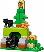 Lego Duplo Лесной заповедник 10584, фото 6