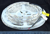 Светодиодная лента бело-теплая  3528-60-IP67-WW-10-12 R3060BA