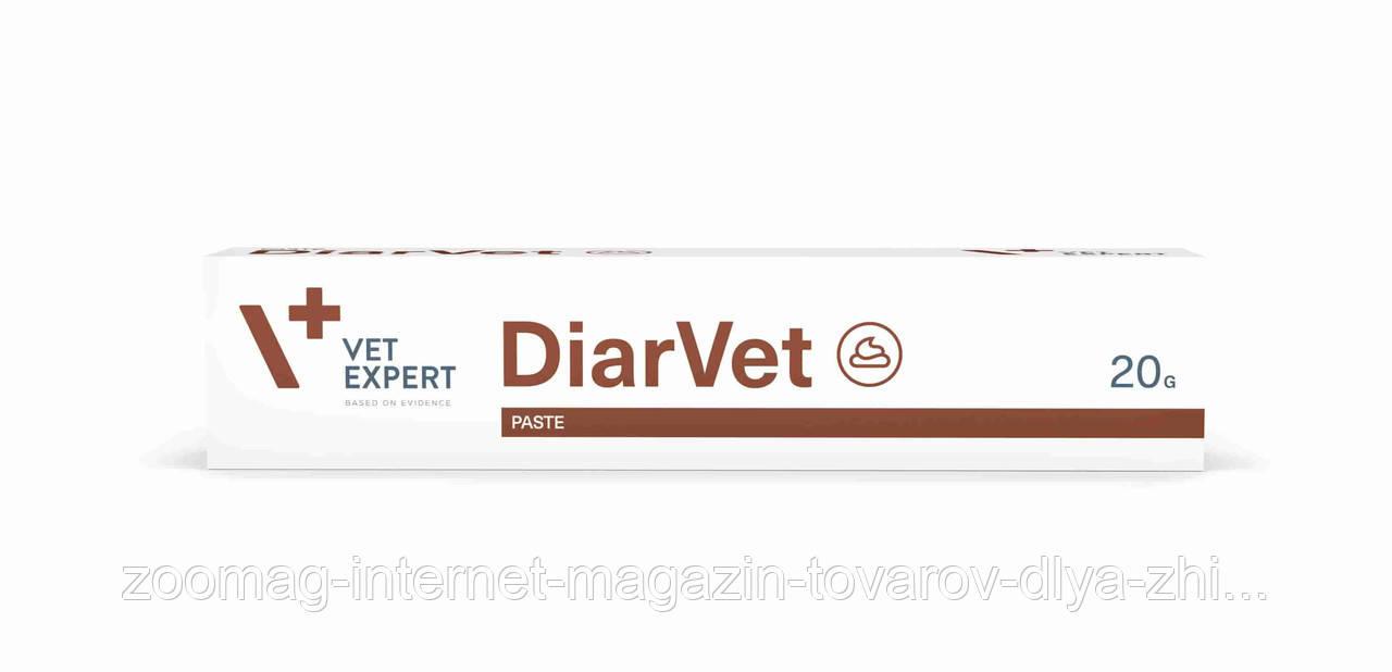 """Паста для животных с острой или тяжелой диареей """"ДиарВет"""" 20гр., VetExpert™"""