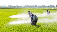 В'єтнам забороняє імпорт гербіцидів на основі гліфосату після судового вироку США