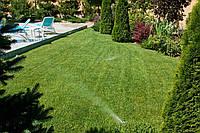 Укладка рулоного газона с подготовкой и системой полива .