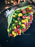 Букет из разноцветных тюльпанов, фото 1