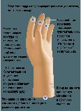 Перчатки PROFEEL SYNTHETIC АНТИСПИД, фото 2