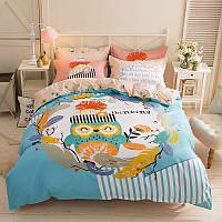 Комплект постельного белья Owl thinks (двуспальный-евро)