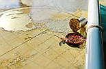 Старовинна скретч карта світу My Map Special Edition ENG 61*43 см Карта в старовинному стилі, фото 7