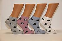 Носки короткие патик женский классика Ф3