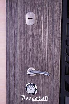 Двери уличные, серия Люкс, VINORIT, модель S-3, гнутый профиль, коробка 100 мм, полотно 76 мм, ковка, фото 2