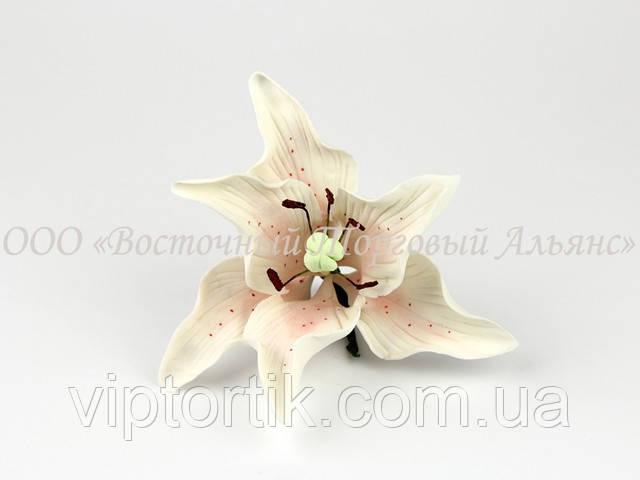 Синие цветы из мастики купить в украине купить искусственные цветы в москве в розницу дешево для кладбища