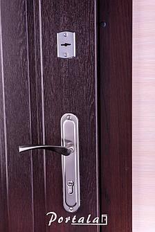Двери уличные, серия Комфорт, модель Арка, тёмный орех, короб - профильная труба, 2 замка, фото 2