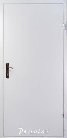 Двери технические, ЕИ30, РАЛ 7035, РАЛ 8017 в наличии, 1 притвор, фото 2