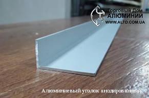 Алюминиевый уголок, Анод, 25х15х1 мм, фото 2