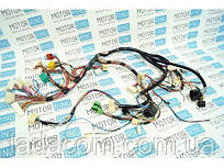 Джгут проводів панелі приладів ВАЗ 2112-3724030-20