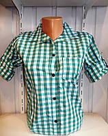 Рубашка рукав 3/4 или короткий клетка в сине-зеленых  тонах