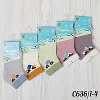 ca9b513f55778 Оригинальные детские носки короткие с рисунком Шугуан C636/1-4 | 10 шт.
