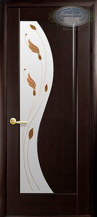 Модель Эскада стекло Р1 межкомнатные двери, Николаев, фото 2