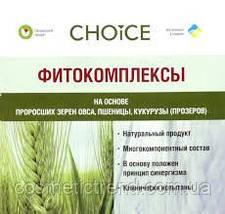 НОРМ Нормалізація обміну речовин на рослинній основі Choice (Україна), фото 3