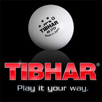 Основание компании Tibhar