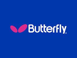 Основание компании Butterfly