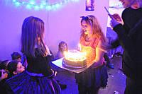 Аниматоры Монстр хай Кети Нуар,Мonster High на детский праздник., фото 1