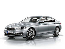 Оригінальні грати радіатора для BMW 5 (F10)
