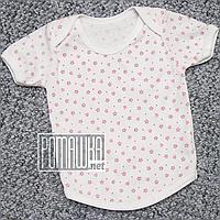 Футболка для новорожденного р. 68 ткань КУЛИР 100% тонкий хлопок 4664 Розовый