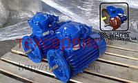Электродвигатель взрывозащищенный АИММ 71В6 0.55 кВт 1000 об/мин (0.55/1000), фото 1