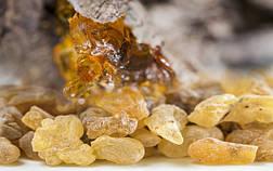 23. Натуральное эфирное масло Ладана 15мл. Читать подробно
